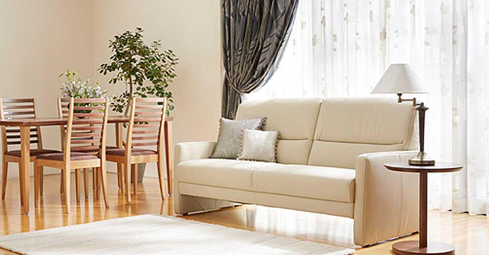コンパクトサイズでもゆったり感のあるソファ「ドルフ」
