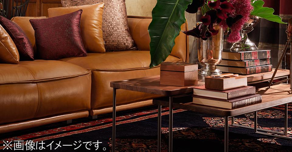 スチール脚とウォールナット材の天板の組合せが軽やかで美しいセンターテーブル